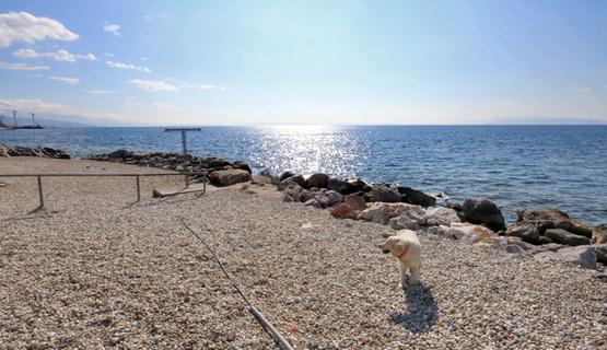 Plaža za pse Kantrida