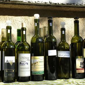 Da pitate Riječane znaju li za Belu nedeju, teško biste našli nekog koji ne zna za ovu feštu od mladoga vina u susjednom Kastvu. No, da ih pitate postoje li u njihovom gradu ljudi koji se bave vinarstvom i vinogradarstvom, možda bi se spomenuli samo ugostitelja koji svoju hranu pažljivo sljubljuju s vrhunskom kapljicom vina. Rijetko tko bi mogao reći da na rubu grada, na granici s onim Kastvom s početka priče, djeluje Udruga vinara, vinogradara i voćara iz Srdoča. Početkom godine obilježila je petu godinu rada, a okuplja 70-ak članova s područja Srdoča, Rijeke i okolice.
