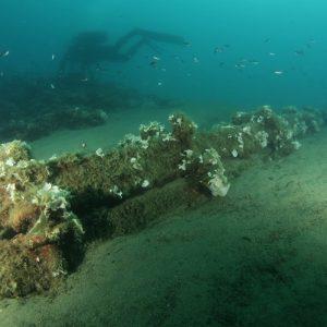 Ronilačka akcija Potraga za torpedom