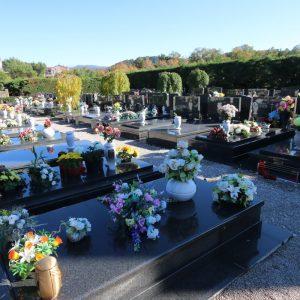 Centralno gradsko groblje Drenova