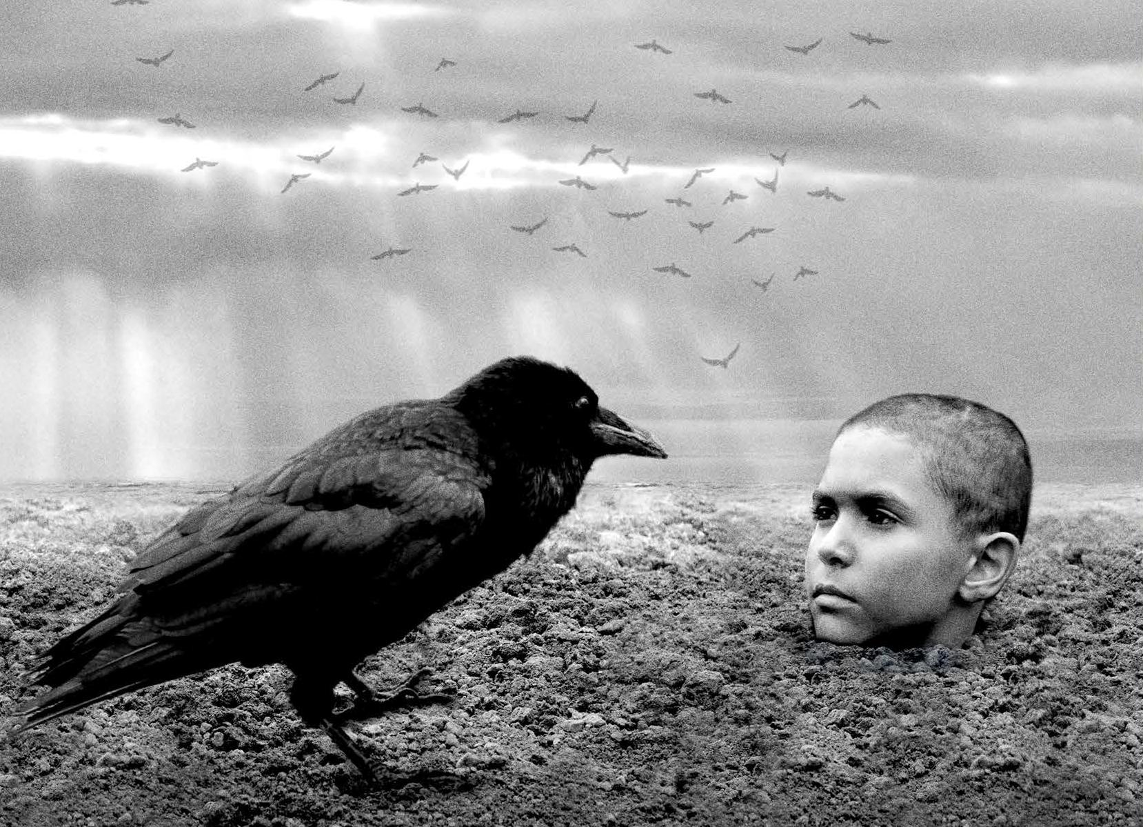 Obojeni ptić - Tjedan češkog filma