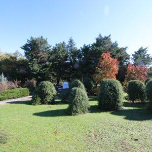 Polje sjećanja na groblju Drenova