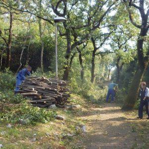 Zeleni val - Park lovora na Kantridi