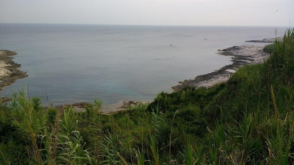 Susačka obala, foto Velid Đekić