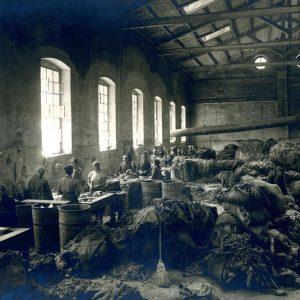Tvornica papira / Foto: Muzej grada Rijeke